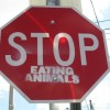On Eating Animals
